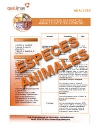 Document Espèces Animales