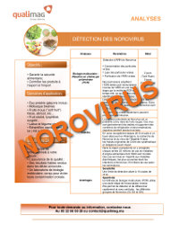 Document Norovirus